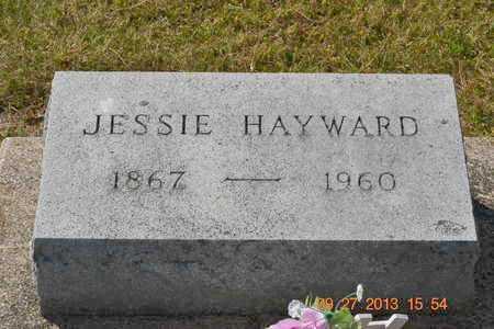 HAYWARD, JESSIE - Branch County, Michigan | JESSIE HAYWARD - Michigan Gravestone Photos