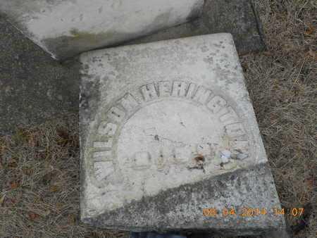 HERINGTON, WILSON - Branch County, Michigan | WILSON HERINGTON - Michigan Gravestone Photos