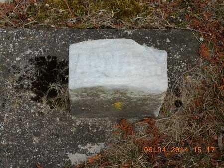HIMEBAUGH, ANNA M. - Branch County, Michigan   ANNA M. HIMEBAUGH - Michigan Gravestone Photos