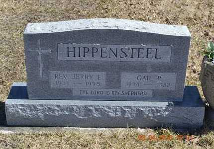 HIPPENSTEEL, REVEREND JERRY E. - Branch County, Michigan | REVEREND JERRY E. HIPPENSTEEL - Michigan Gravestone Photos