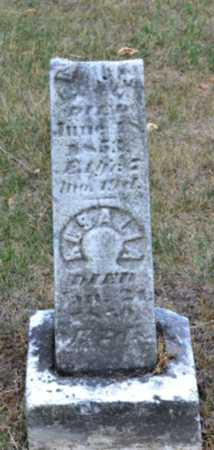 HODGKINS, ROSALIA - Branch County, Michigan   ROSALIA HODGKINS - Michigan Gravestone Photos