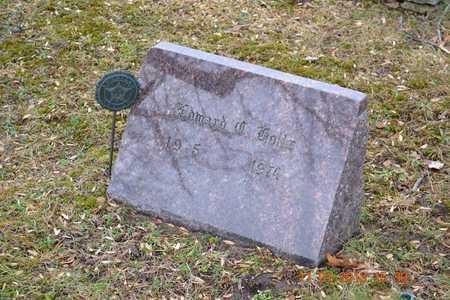 HOLTZ, EDWARD C. - Branch County, Michigan | EDWARD C. HOLTZ - Michigan Gravestone Photos