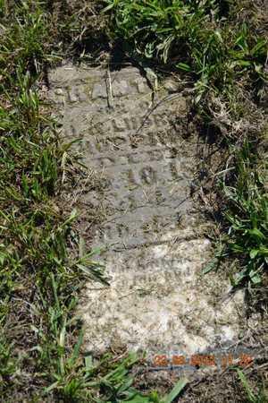 HOPPINS, GRANT - Branch County, Michigan   GRANT HOPPINS - Michigan Gravestone Photos