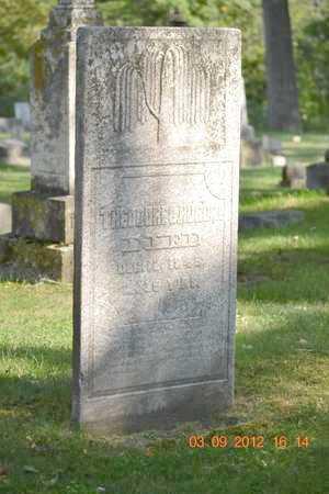 HURD, THEODORE C. - Branch County, Michigan   THEODORE C. HURD - Michigan Gravestone Photos