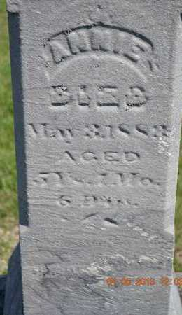 HURLEY, ANNIE - Branch County, Michigan | ANNIE HURLEY - Michigan Gravestone Photos