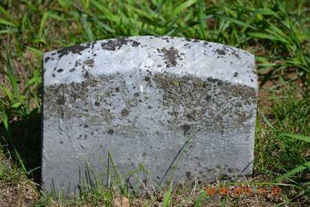 HURLEY, ALMEDA - Branch County, Michigan | ALMEDA HURLEY - Michigan Gravestone Photos