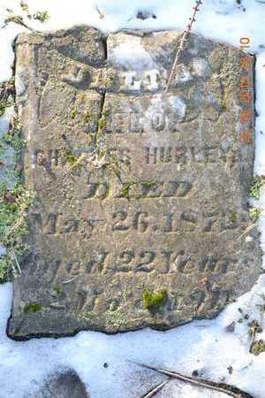 HURLEY, DELLA - Branch County, Michigan | DELLA HURLEY - Michigan Gravestone Photos