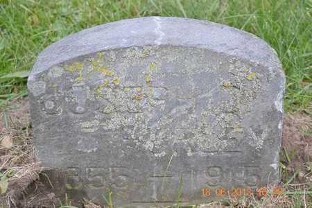 HURLEY, JOSEPH - Branch County, Michigan | JOSEPH HURLEY - Michigan Gravestone Photos