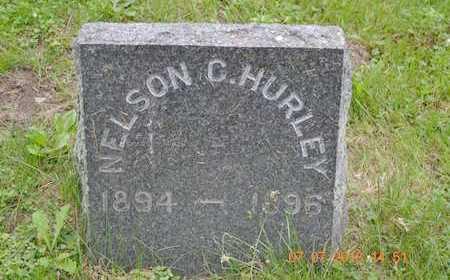 HURLEY, NELSON C. - Branch County, Michigan   NELSON C. HURLEY - Michigan Gravestone Photos