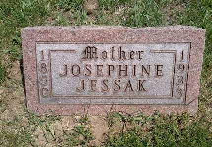 JESSAK, JOSEPHINE - Branch County, Michigan | JOSEPHINE JESSAK - Michigan Gravestone Photos