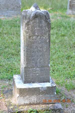 JOHNSON, LENA - Branch County, Michigan | LENA JOHNSON - Michigan Gravestone Photos