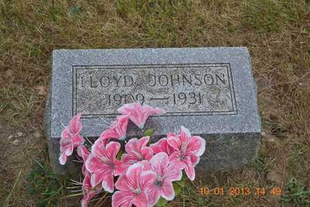 JOHNSON, LLOYD - Branch County, Michigan | LLOYD JOHNSON - Michigan Gravestone Photos