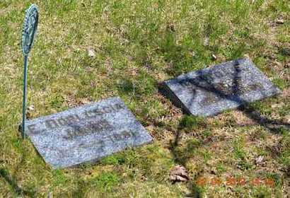 JONES, NEWTON E. - Branch County, Michigan | NEWTON E. JONES - Michigan Gravestone Photos