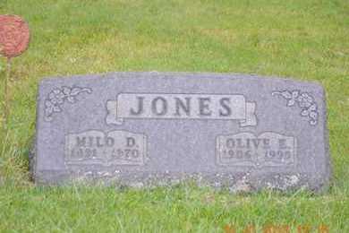 JONES, OLIVE E. - Branch County, Michigan | OLIVE E. JONES - Michigan Gravestone Photos