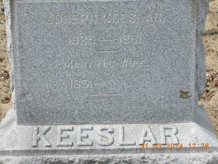 KEESLAR, MARY - Branch County, Michigan | MARY KEESLAR - Michigan Gravestone Photos