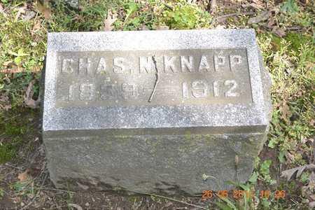 KNAPP, CHARLES N. - Branch County, Michigan   CHARLES N. KNAPP - Michigan Gravestone Photos