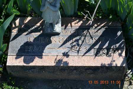KNAPP, ELEANOR JUNE - Branch County, Michigan | ELEANOR JUNE KNAPP - Michigan Gravestone Photos