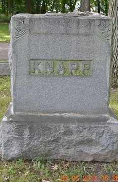 KNAPP, FAMILY - Branch County, Michigan | FAMILY KNAPP - Michigan Gravestone Photos
