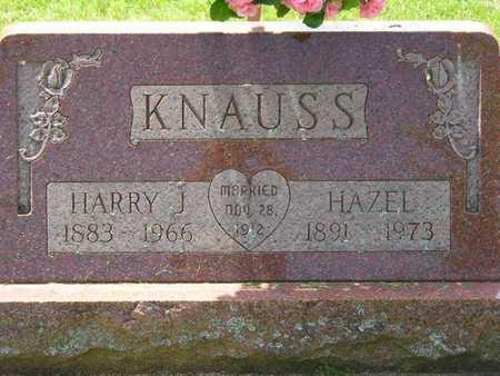 KNAUSS, HARRY J. - Branch County, Michigan | HARRY J. KNAUSS - Michigan Gravestone Photos