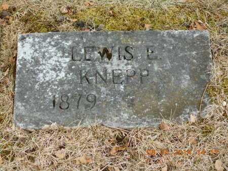 KNEPP, LEWIS E. - Branch County, Michigan   LEWIS E. KNEPP - Michigan Gravestone Photos