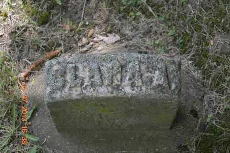 LEWIS, CLARA A. - Branch County, Michigan | CLARA A. LEWIS - Michigan Gravestone Photos