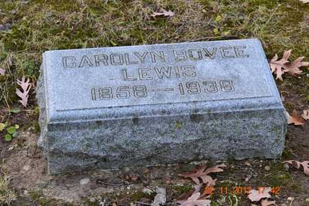 LEWIS, CAROLINE - Branch County, Michigan | CAROLINE LEWIS - Michigan Gravestone Photos