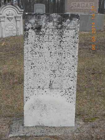 LEWIS, FANNY E. - Branch County, Michigan | FANNY E. LEWIS - Michigan Gravestone Photos