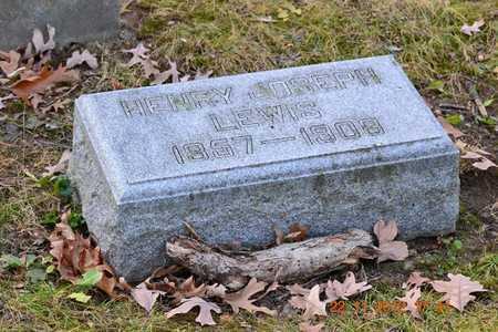 LEWIS, HENRY JOSEPH - Branch County, Michigan | HENRY JOSEPH LEWIS - Michigan Gravestone Photos