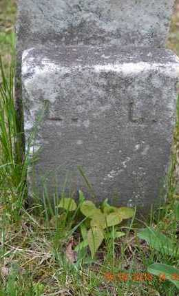 LEWIS, LUCY(FOOTSTONE) - Branch County, Michigan | LUCY(FOOTSTONE) LEWIS - Michigan Gravestone Photos