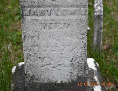 LEWIS, MARY(CLOSEUP) - Branch County, Michigan | MARY(CLOSEUP) LEWIS - Michigan Gravestone Photos