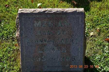 LEWIS, MERIAN - Branch County, Michigan | MERIAN LEWIS - Michigan Gravestone Photos