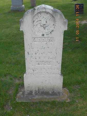 LITTLE, ADDIE - Branch County, Michigan | ADDIE LITTLE - Michigan Gravestone Photos
