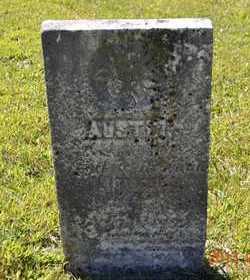 LITTLE, AUSTIN - Branch County, Michigan | AUSTIN LITTLE - Michigan Gravestone Photos
