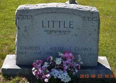 LITTLE, KITTIE - Branch County, Michigan | KITTIE LITTLE - Michigan Gravestone Photos