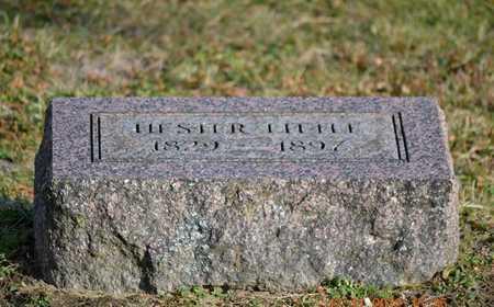 LITTLE, HESTER - Branch County, Michigan | HESTER LITTLE - Michigan Gravestone Photos