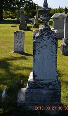 LITTLE, TRUMAN - Branch County, Michigan | TRUMAN LITTLE - Michigan Gravestone Photos