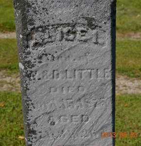LITTLE(CLOSEUP), ALICE I. - Branch County, Michigan | ALICE I. LITTLE(CLOSEUP) - Michigan Gravestone Photos