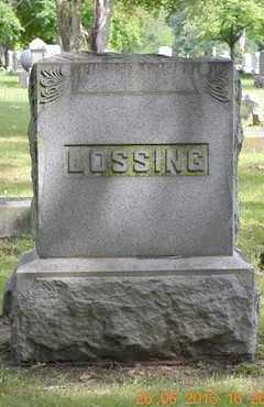 LOSSING, FAMILY - Branch County, Michigan | FAMILY LOSSING - Michigan Gravestone Photos