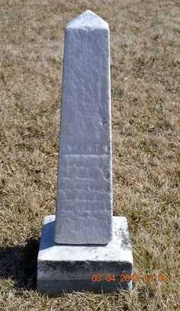 LOSSING, HART N.C. - Branch County, Michigan | HART N.C. LOSSING - Michigan Gravestone Photos