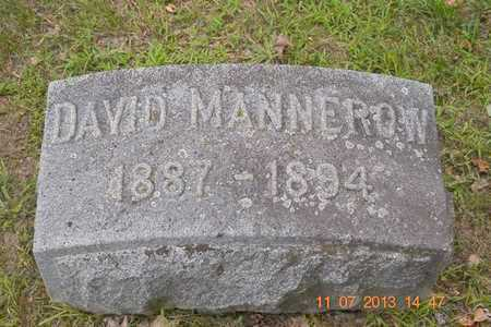 MANNEROW, DAVID - Branch County, Michigan | DAVID MANNEROW - Michigan Gravestone Photos