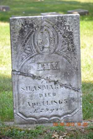 MARBLE, AMY - Branch County, Michigan | AMY MARBLE - Michigan Gravestone Photos