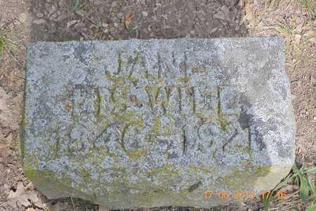 MARTIN, JANE - Branch County, Michigan | JANE MARTIN - Michigan Gravestone Photos