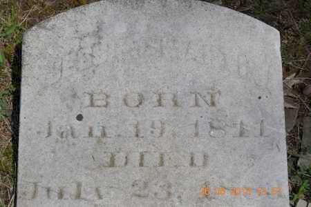 MARTIN, JESSIE C. - Branch County, Michigan | JESSIE C. MARTIN - Michigan Gravestone Photos