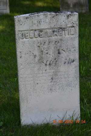 MARTIN, JESSE - Branch County, Michigan   JESSE MARTIN - Michigan Gravestone Photos