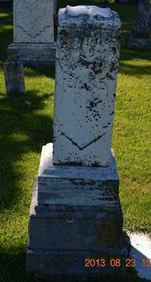 MARTIN, ELIZABETH - Branch County, Michigan | ELIZABETH MARTIN - Michigan Gravestone Photos