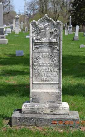 MATTESON, AMOS - Branch County, Michigan   AMOS MATTESON - Michigan Gravestone Photos