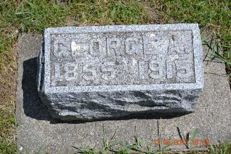 MCCLISH, GEORGE A. - Branch County, Michigan | GEORGE A. MCCLISH - Michigan Gravestone Photos