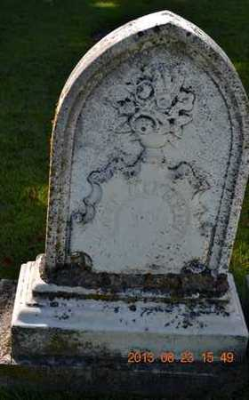 MCKINLEY, JOHN - Branch County, Michigan | JOHN MCKINLEY - Michigan Gravestone Photos