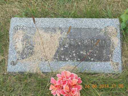 MERRIMAN, FLOYD R. - Branch County, Michigan | FLOYD R. MERRIMAN - Michigan Gravestone Photos