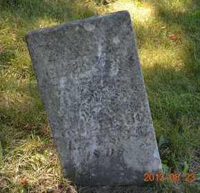 NASH, EMERY - Branch County, Michigan | EMERY NASH - Michigan Gravestone Photos
